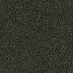 Allsport 9009 Black Indoor Upholstery Fabric