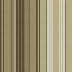Tempotest Stripe Brown/Natural 5011/57 Awning Fabric