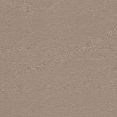 Endurasoft Windsong WIS721 Moonbeam Upholstery Fabric