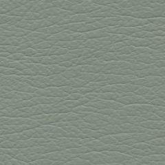 Ultraleather Eucalyptus 4430 Upholstery Fabric