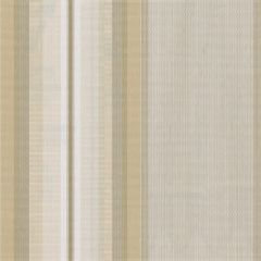 Tempotest Stripe Bamboo/Sienna 947/14 Awning Fabric