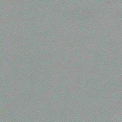 Allsport 94 Silver Met Indoor Upholstery Fabric
