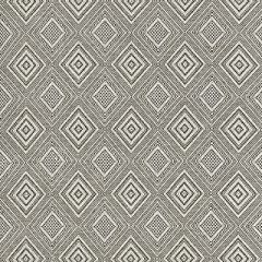 Scalamandre Antigua Weave Carbon 6 Isola Indoor/Outdoor Collection Multipurpose Fabric