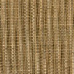 Phifertex Plus Yellow 406 54 inch Sling / Mesh Upholstery Fabric
