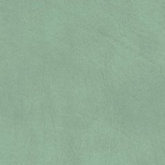 Allegro 7063 Sage Green Marine Upholstery Fabric