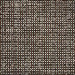 Sunbrella Framework Bronze 50200-0002 Sling Upholstery Fabric