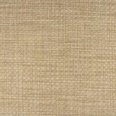 Phifertex Echo Valley Sadat EH6 Wicker Weave 54 inch Sling / Mesh Upholstery Fabric