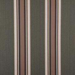 Sunbrella Mayfield Emblem Fern 4801-0000 46-Inch Awning / Marine Fabric