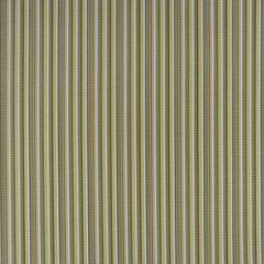 Phifertex Delray Stripe Kiwi DJ6 54-inch Sling / Mesh Upholstery Fabric