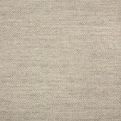 Sunbrella Action Ash 44285-0001 Upholstery Fabric