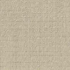 Remnant - Sunbrella Silica Silver 4862-0000 46-Inch Awning / Marine Fabric (4.78 yard piece)