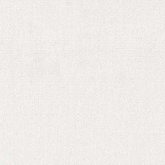 Remnant - Sunbrella 6004-0000 Natural (White) 60 in. Awning / Marine Grade Fabric (1.61 yard piece)